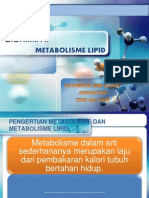 Final Ppt Biokimia II