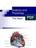 3963008 Anatomy and Physiology the Heart