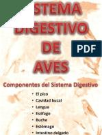 SISTEMA DIGESTIVO DE AVES.pptx