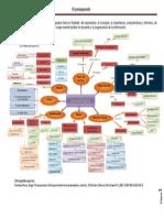 mapa conceptual del presupuesto.pdf