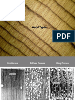 Wood Types ppt