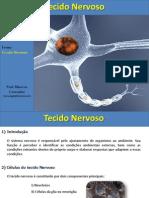 tecidonervoso-120618082243-phpapp02