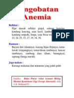 Pengobatan Anemia