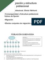 Estructura Poblacional