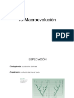 18-Macroevol