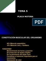 Fisio I Unidad Motora