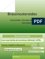 Brassinosteróides aula completa