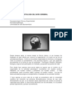 []_Etiologia_Del_Daño_Cerebral
