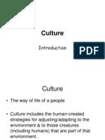 Wk 4 Culture