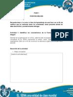 Actividades Fase 1(1)