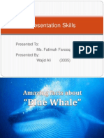 Blue Whale Interesting Facts