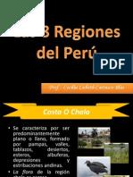 8 Regiones Peru Agricultura