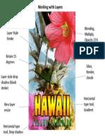 Presentation1 Hawaii