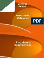 Control Reacciones Celulares