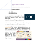EL SISTEMA VISUAL.pdf