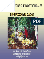 Beneficio Cacao