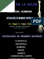 Osteologia Superior 2013- II Ausjb