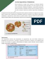 Metabolismo das Lipoprote+¡nas e Dislipidemias