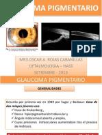 Glaucoma Pigmentario Expo 2013