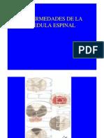 Enf Neurodegenamedula Espinal