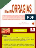 hemorragiasolga-091125155821-phpapp01