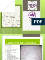 lectura ppt
