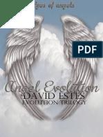 1. Angel Evolution - David Estes
