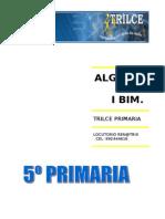 Algebra i Bim