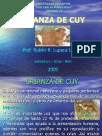crianza-de-cuy-1232809176592416-32-120430170247-phpapp02