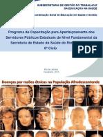 Doenças_mais_comuns_na_população_negra Fundamental