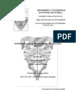 Antología. Diagnóstico clínico Radostits