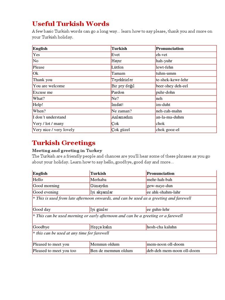 Turkish Plural English Language