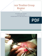 Old Flexor Tendon Group Ruptur