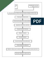 Pathophysiology CHF