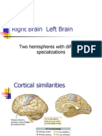 Psychology Right and Left Brain