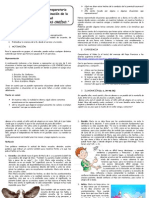 2º Subsidio Preparatorio - Peregrinación 2013
