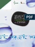 Informe Situacion y Retos Green TIC en España