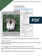 El filtro licuar.pdf