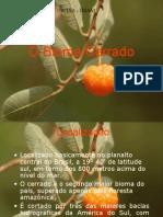 TRABALHO CERRADO