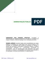Agentes Publico e Resumo de RJU