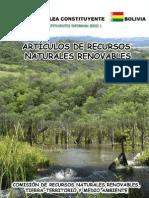 Recursos naturales renovables - Asamblea Constituyente.pdf