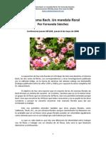 El Sistema Bach. Un Mandala Floral
