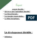 Dev Durable