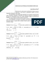 Teoremas Para Obtencao Da Inversa de Matrizes Especiais