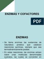 Enzimas y Cofactores