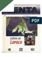 Guia Loroco