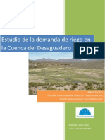 Demanda Mauri-Desaguadero.pdf