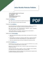 Curriculum Vitae, Julio 2013, Matias Palacios Poblete