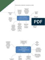 Metodos Para Evaluar La Frescura y Calidad en La Carne Mapa Conceptual