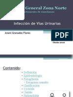 40654484 Infeccion de Vias Urinarias